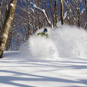 backcountry ski in hakuba