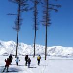Snowshoe in Hakuba