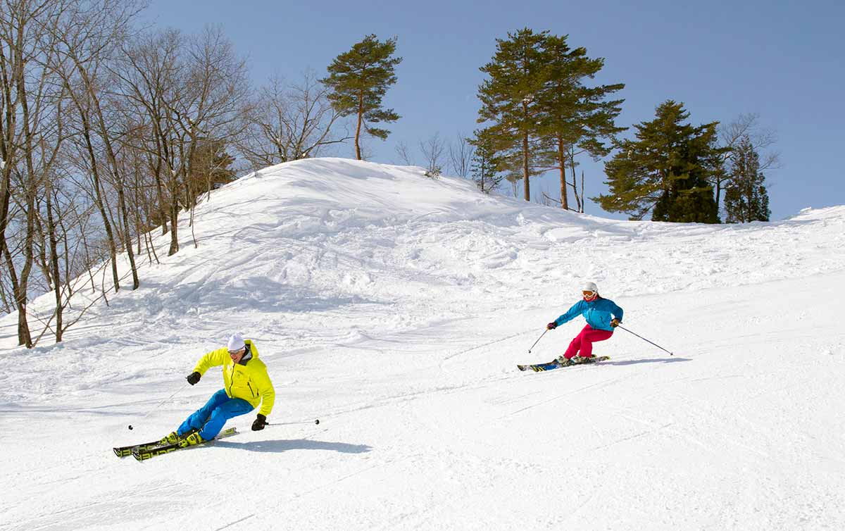 private hakuba ski lesson - landscape