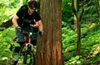 hakuba japan mountain bike