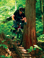 mountain biking in hakuba
