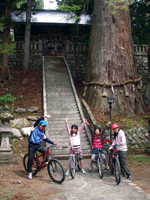 mountain biking in japan