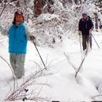 cross country ski in hakuba