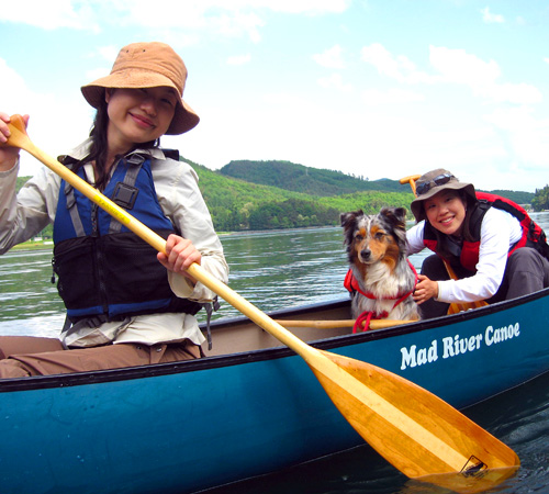 canadian canoe on aokiko with dog